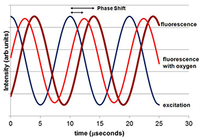 Oxygen Phase Shift